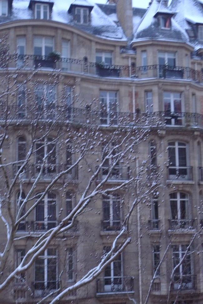 Paris covered in a light layer of snow.  This was taken with the early morning light creating a gray cast on the landscape.