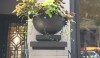 There are beautiful cast iron pots all over the city. I like the simplicity of this one in particular.